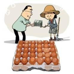 서울의 한 사립고, 시중가 3배에 급식용 계란 산 이유 보니