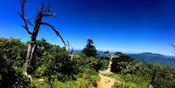 [더,오래] 하만윤의 산 100배 즐기기(4) 비현실적 아름다움으로 화답하는 민족의 영산