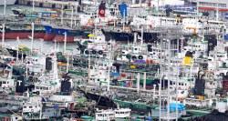 [사진] <!HS>태풍<!HE> '탈림' 온다, 발 묶인 부산 어선들