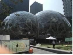 """""""<!HS>아마존<!HE>에 어울리는 도시는 바로 나""""…뉴욕, <!HS>아마존<!HE> 제2사옥 유치 러브콜"""