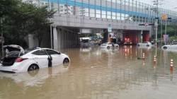 [강찬수의 에코 파일]빗나간 강수량 예보, 기상청 탓일까 온난화 탓일까