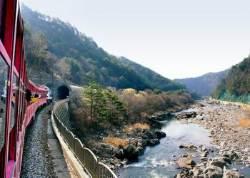 [돈 아끼는 여행꿀팁]1만원짜리 기차여행, 9월25·26일 선착순 예약