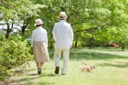 [더,오래] 최재식의 연금 해부하기(10) 위기의 연금, 일하는 노년이 답