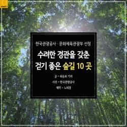 [<!HS>카드뉴스<!HE>] 수려한 경관을 갖춘 걷기 좋은 숲길 10곳
