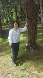[더,오래] 송의호의 온고지신 우리문화(8) 분묘 대신 소나무…친환경 '수목장' 뜬다