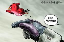 [박용석 만평] 11월 15일