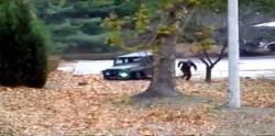 북한군 병사 1명 또 귀순…군 경고 사격에 북한군 총성도