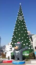 성탄 이야기  백악관에도, 중동 호텔에도...완벽한 원추형 성탄 트리, 한국에서 갔어요