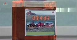 [북한TV속의 삶 이야기] 北, '바이오 디젤유 개발' 주장
