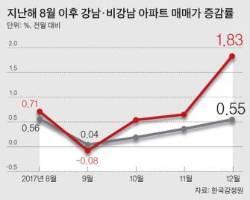"""[강남 집값의 역설] """"자사고·외고 없어진대"""" 대치동 집 찾는 마포맘"""