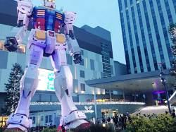 [돈 아끼는 여행 꿀팁] 전세기 타고 도쿄 여행할까