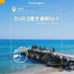 [카드뉴스] 인스타 강릉 핫 플레이스 9