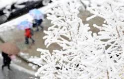 대한민국 춘삼월 눈눈눈…도로 곳곳 통제, 학교는 휴교령