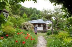[week&] 사람 향기도 은은 … 봄날의 정원을 걸어볼까요