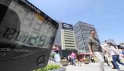 재난수준 무더위, 이달만 7명 '사망'…주말 더 뜨겁다