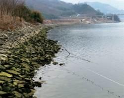 바닷물 20㎞까지 역류 … 하류가 죽어간다