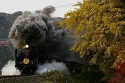 [알수록 갈수록 일본] 시간을 달리는 기차 타고 야마구치 낭만 여행