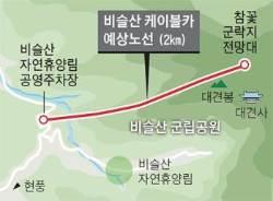 """대구 비슬산 케이블카 본격 추진 중…""""관광객 증가 기대"""" vs """"자연 훼손된다"""""""