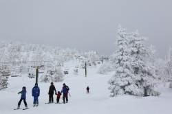 4월까지 스키 탈 수 있는 '겨울왕국'은 어디?