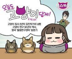 '오늘도 고양이답게'···사료 브랜드 위스카스서 만든 웹툰 인기