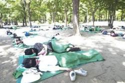 [서소문사진관] 청춘남녀 50명, 숲속에서 단체로 낮잠을?