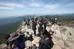 [더,오래] 하만윤의 산 100배 즐기기(1) 산 제대로 오르려면 모임 가입부터