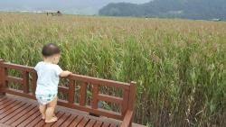 '뚜벅이 아빠'의 순천·여수 여행기, 낭만과 청춘이 머물다 가는 곳