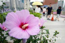 광복절, 전북 흐리고 비 오락가락···내일까지 10~50㎜