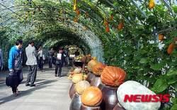 '농업이 세상을 바꾼다' 국제농업박람회 26일 개막