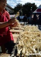 [뉴시스앵글]'홍삼으로 건강 챙기자'···진안 홍삼축제 개막
