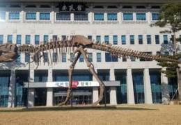 구글 따라한 공룡 치운 경북도청, 그 곳 5억 비행기 들인다