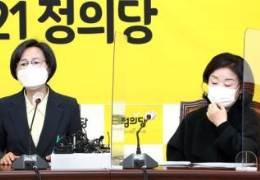 구체적 공개 안 된 김종철 성추행···法 머리카락도 인정했다