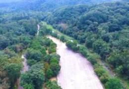 560년 지킨 '절대보존림' 광릉숲, 봄 맞아 초록 물들은 10경