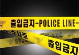 """""""진검승부""""장검·식칼 든 40대들···CCTV찍힌 강남 나체 난동"""