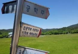 지방대 20곳 미충원 허덕일때···수도권은 입학정원 늘었다