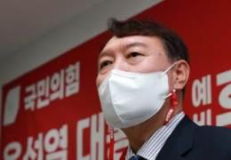 스텔스기 반대한 간첩혐의자, 올초 '尹 탄핵' 신문광고 모금