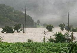 '섬진강 시인' 고향도 물에 잠겼다···눈앞서 본 끔찍한 풍경