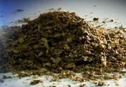 국민연금, 마약하고 투자했나···혐의 4명 중 일부 마약 양성