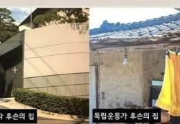 """""""친일파 열심히 살 때 뭐했나"""" 독립운동가 조롱한 윤서인"""