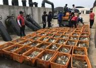 [기획]펄펄 끓는 바다에 전국 양식장 비상…곳곳 어류 집단폐사