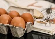 '살충제 달걀 여파' 대형마트 3사, 전국 매장 계란 판매 중단