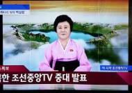 또 다시 등장한 평양의 '핑크 레이디'…이춘희 나오면 변고?