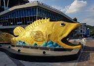 [굿모닝 내셔널]멸종위기 민물고기 집결한 단양 아쿠아리움 가보니