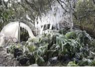 [Visual News] 29년 만에 눈 내린 美 플로리다···2.5㎝ 눈에 휴교령