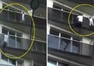 30초만에 5층 기어올라가 아이 구한 스파이더맨 정체