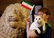 [서소문사진관]러시아 승리 예측한 고양이 이란 승리도 맞춰! 뒤이어 점쟁이 사자도 등장! 펠레는?