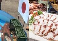 """""""돈 궁했다""""…일본 16강 진출 예언한 문어, 결국 횟집으로"""