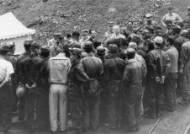 [6·25 전쟁 60년] 대구에서 품은 강군의 꿈 (219) 민둥산 녹화사업