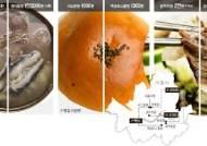 강북 1000원, 강남 1300원…같은 식당 같은 음식 값 차이 왜