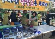 기부받은 식재료로 노인들 요리 대접…주부들의 이색 봉사